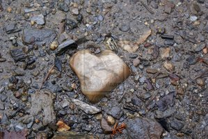 ___heart_of_stone____by_KriThem